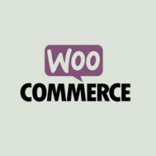 WooCommerce Chatbot